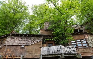 The Treehouse in Alwnick Gardens